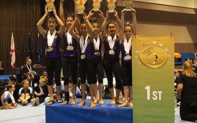 SoCal Level 7 Team wins the National Judges Cup